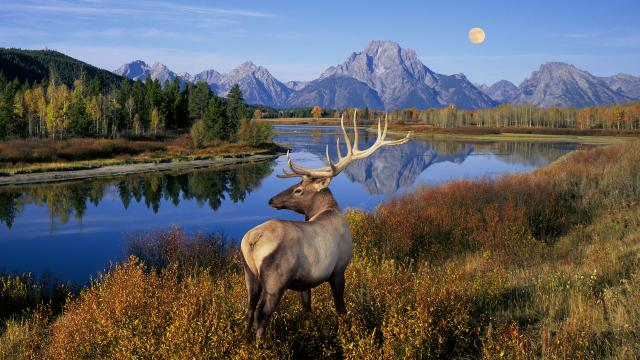 09 - grand-teton-national-park-wyoming-usa[1]